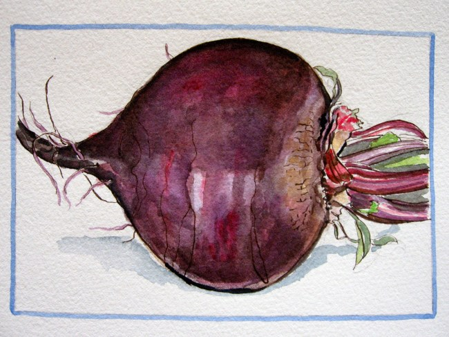 This is the beet that Tom grew.