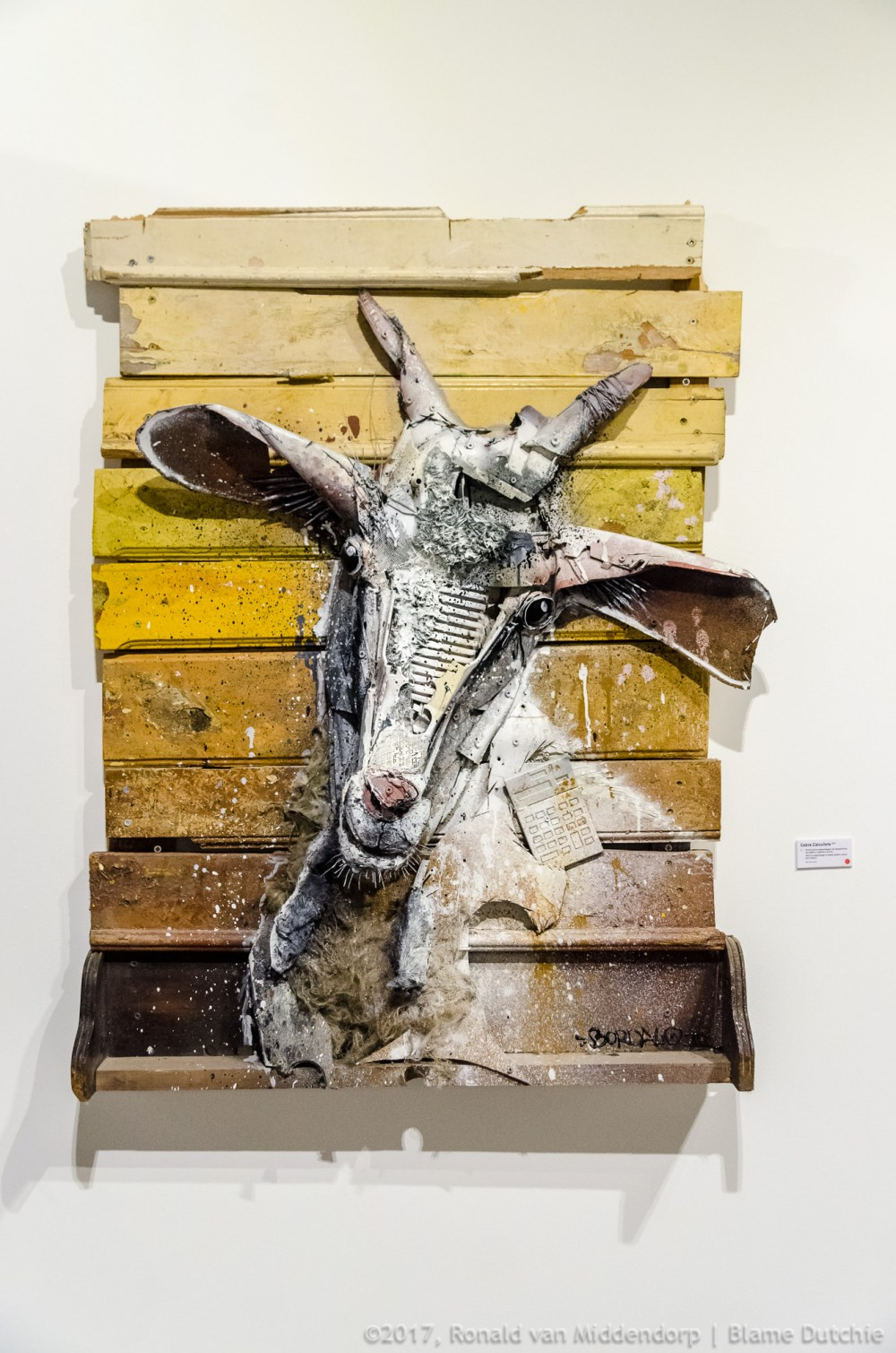 photo: art Bordalo II