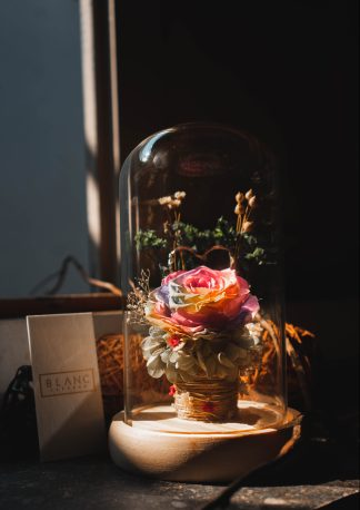 ANGERS - PRESERVED RED ROSE DOME | LA VIE EN ROSE | BLANC SIGNATURE