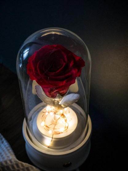 PRESERVED RED ROSE DOME - BLUETOOTH SPEAKER