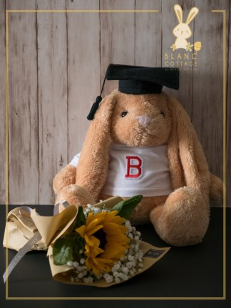 🐰 PEANUT BUNNY - BROWN RABBIT DOLL | 2019 COLLECTION | BLANC COTTAGE