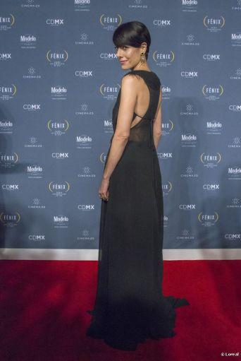PremiosFENIX2014-1