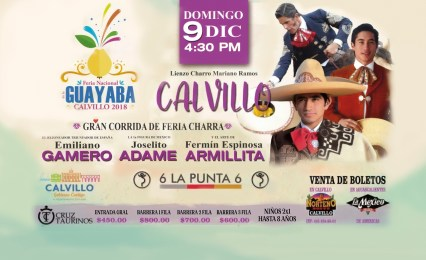 Media Feria de la Guayaba