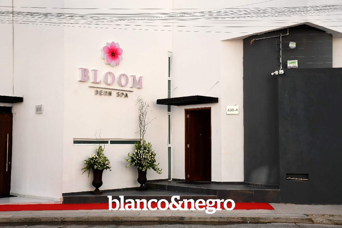 BLOOM-008