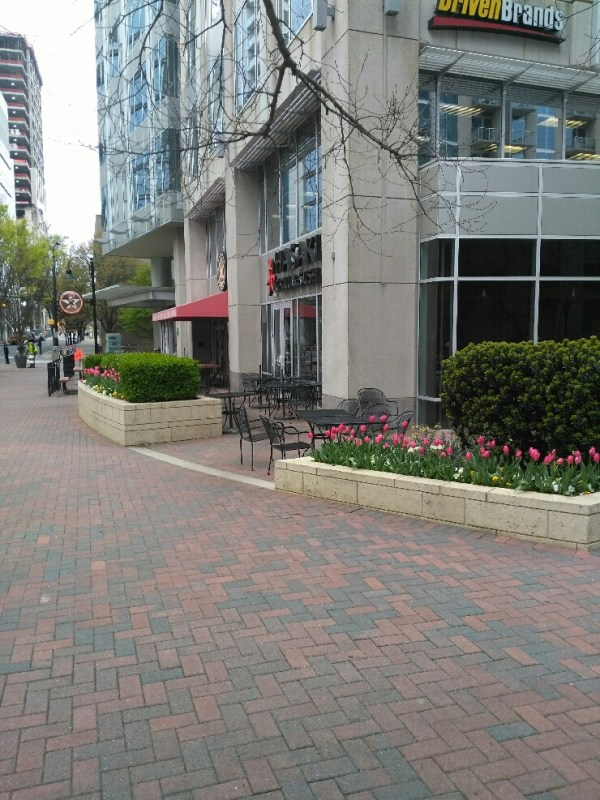 commercial landscaping charlotte
