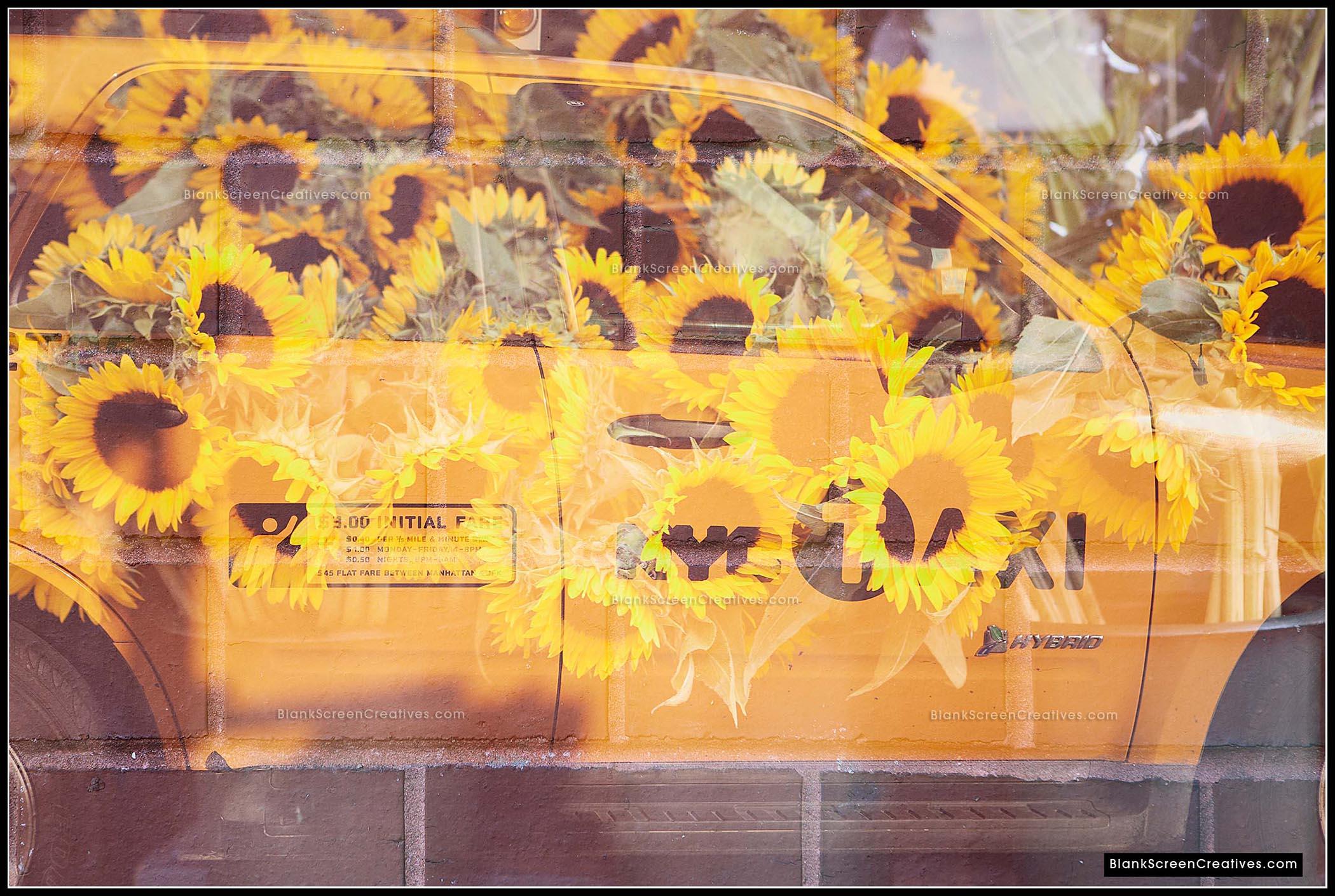 """""""Yellow Cab"""""""
