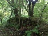 2013 Ruined Summerhouse Calderwood Glen