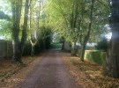 2014 The Lane leading to Croftfoot, High Blantyre. Pictured mid Sep by P Veverka