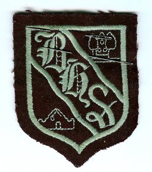 1982 Blantyre High School Badge