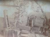 c1910 Boathouse Farm buildings, Blantyre (and fruit!)