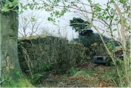 Craigmuir Cottage Ruins by Alex Rochead