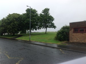 2014 Larkfield Bing near Carrigans