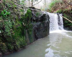 The Gow's Linn photographed by Jim Brown