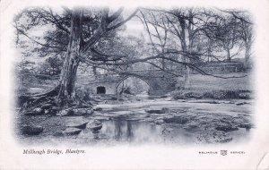 Millheugh Bridge, Blantyre (3)