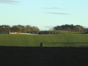 2008 Campknowe, Blantyre by Chris Ladds