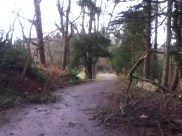 2011 Dec Greenhall (PV)