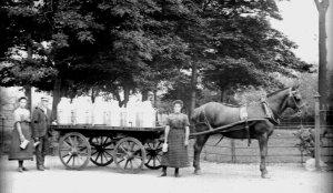 1910s Alex Craig at Bellsfield Farm