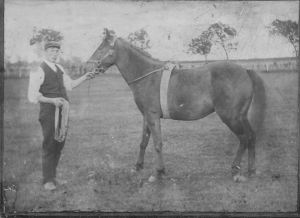 1920s Robert Main at Little Udston farm