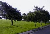 2012 Glenfruin Road PV