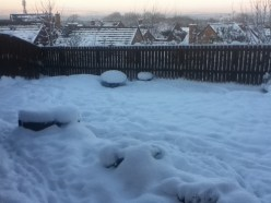 2010 Westrcaigs snow