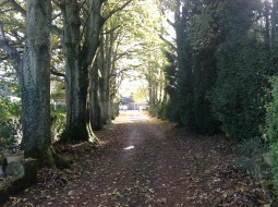 2012 Lane leading to Main Street from Croftfoot