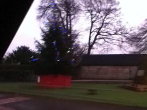 2011 December HIgh Blantyre xmas Tree (PV)