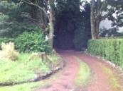 2012 Lane leading to Main Street (PV)