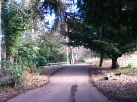 2013 Greenhall Winter walk (PV)