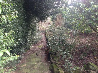 2015 Path to Kennings Wall, Kikrton (PV)