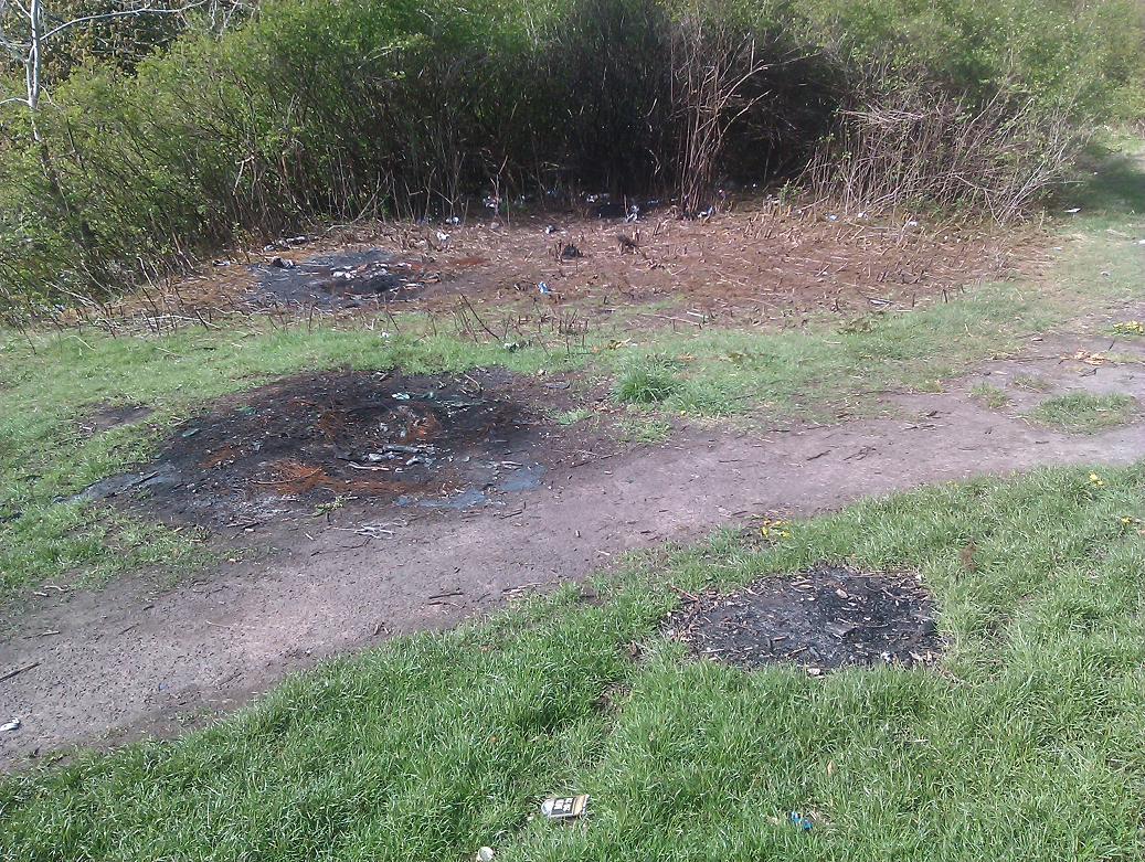 2015 Milheugh Mess end April