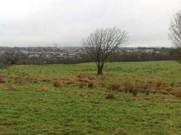 2015 Calderside (PV) in January