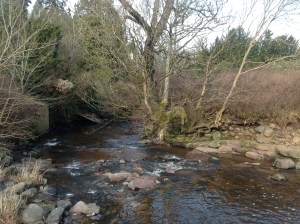 2015 Milheugh Bridge Abutments (PV) Jan.