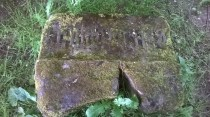 2015 Livingstone gravestone. Family member