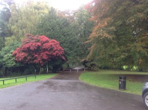 Greenhall Park, Blantyre pictured by Paul Veverka 2013