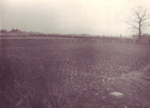 1940's Russell's Farm looking to Stonefield. Shared by Elaine Russell
