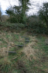 2015 Woodland path Spring needs cleared at Barnhill.