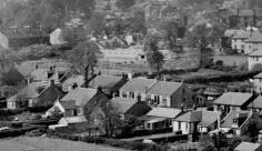 1955 Auchinraith Nurseries Main Street, HIgh Blantyre