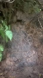 "The ""stone slab"" covering the alleged tunnel entrance"
