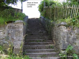 Steps at DLC by G Cook