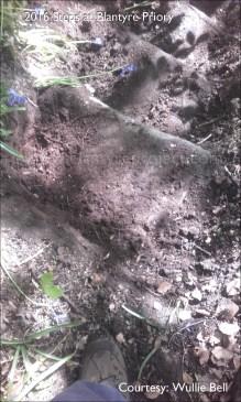 2016 Blantyre Priory hidden steps