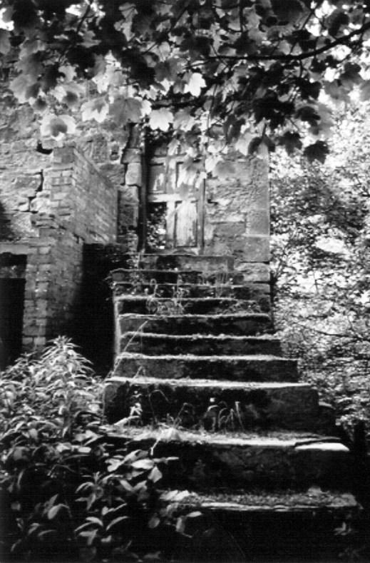 13 Rear Entrance steps