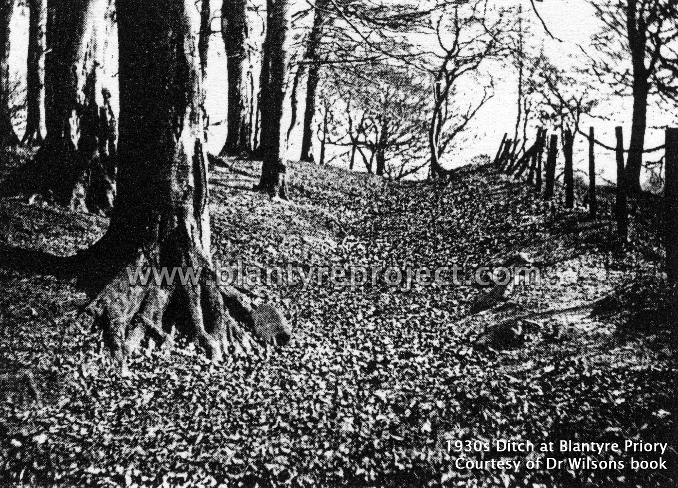 1930s Ditch at Blantyre Priory