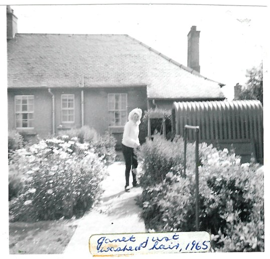 1964janetingarden