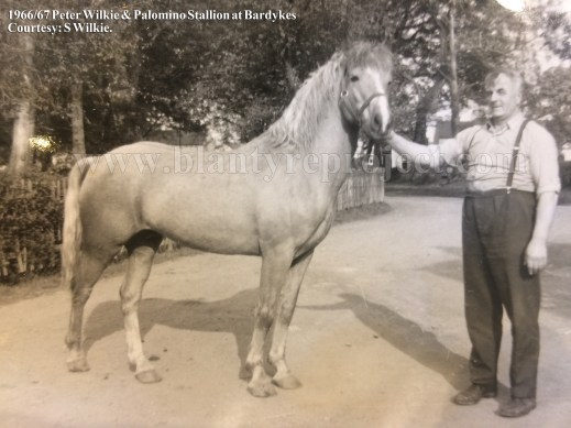 1966 Horse and Peter Wilkie wm