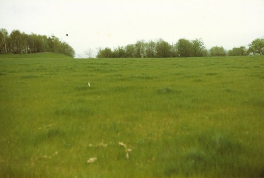 1985 Priory Fieldsa
