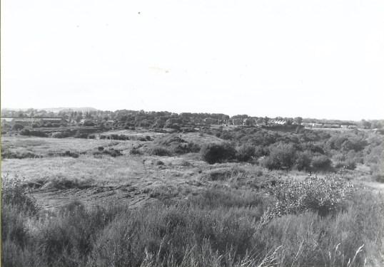 1979 Craighead Bing1