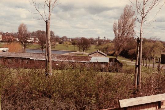 1982 Public Park1