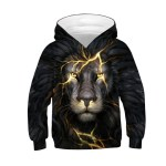 New-Fashion-Boy-Girl-3d-Sweatshirts-Print-Golden-Lightning-Lion-Hooded-Hoodies-Children-Thin-Hoody-Tracksuits.jpg_640x640