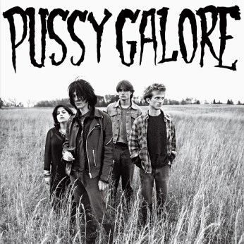 """PUSSY GALORE :: Groovy Hate Fuck 12"""""""