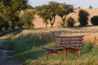 Bank Landschaft Natur Getreide Abend